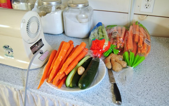 Juicing carrots, cucumbers, celery, and ginger.